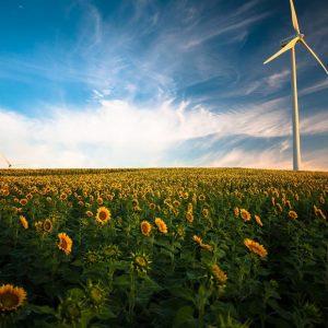 Die Zukunft der Energieversorgung? Erneuerbare-Energie-Gemeinschaften in Österreich